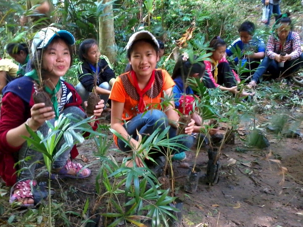 During HDS's nature camp our students planted saplings at a reforestation area.